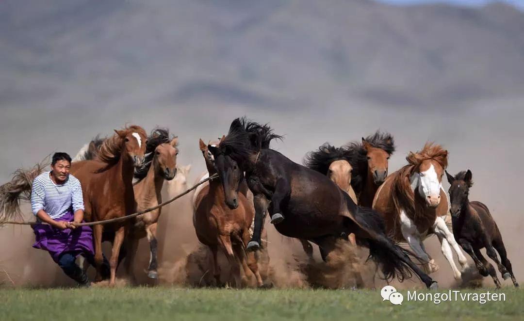 蒙古影像-ch ganbat 第3张
