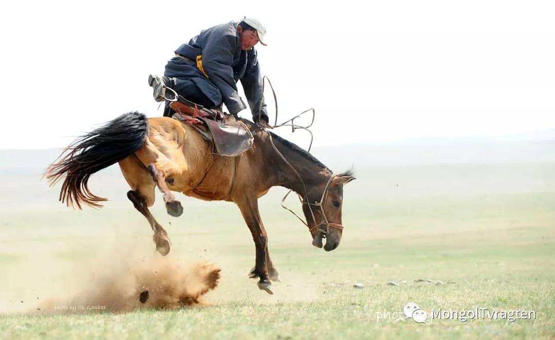 蒙古影像-ch ganbat 第7张