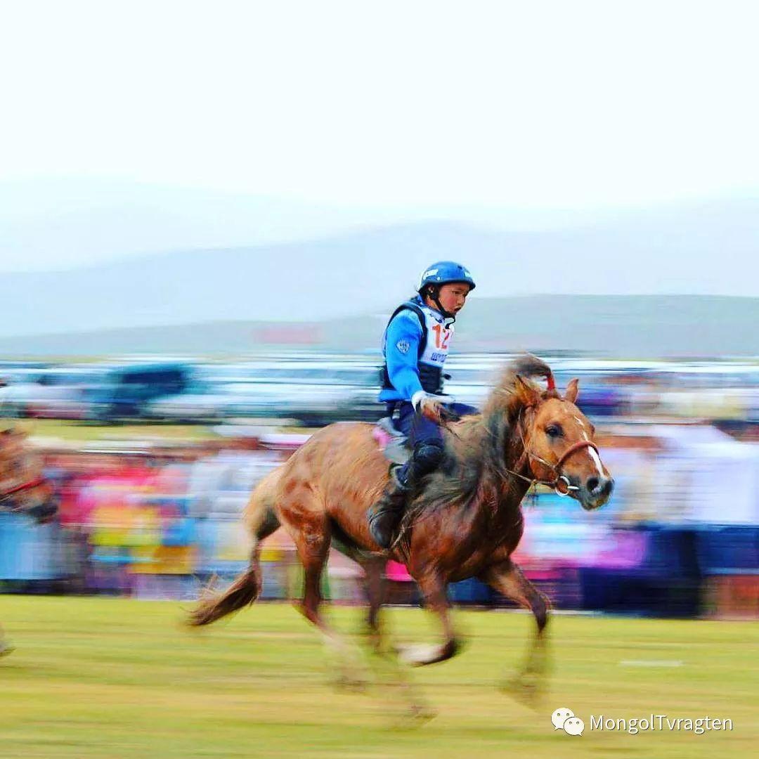 蒙古影像-ch ganbat 第20张