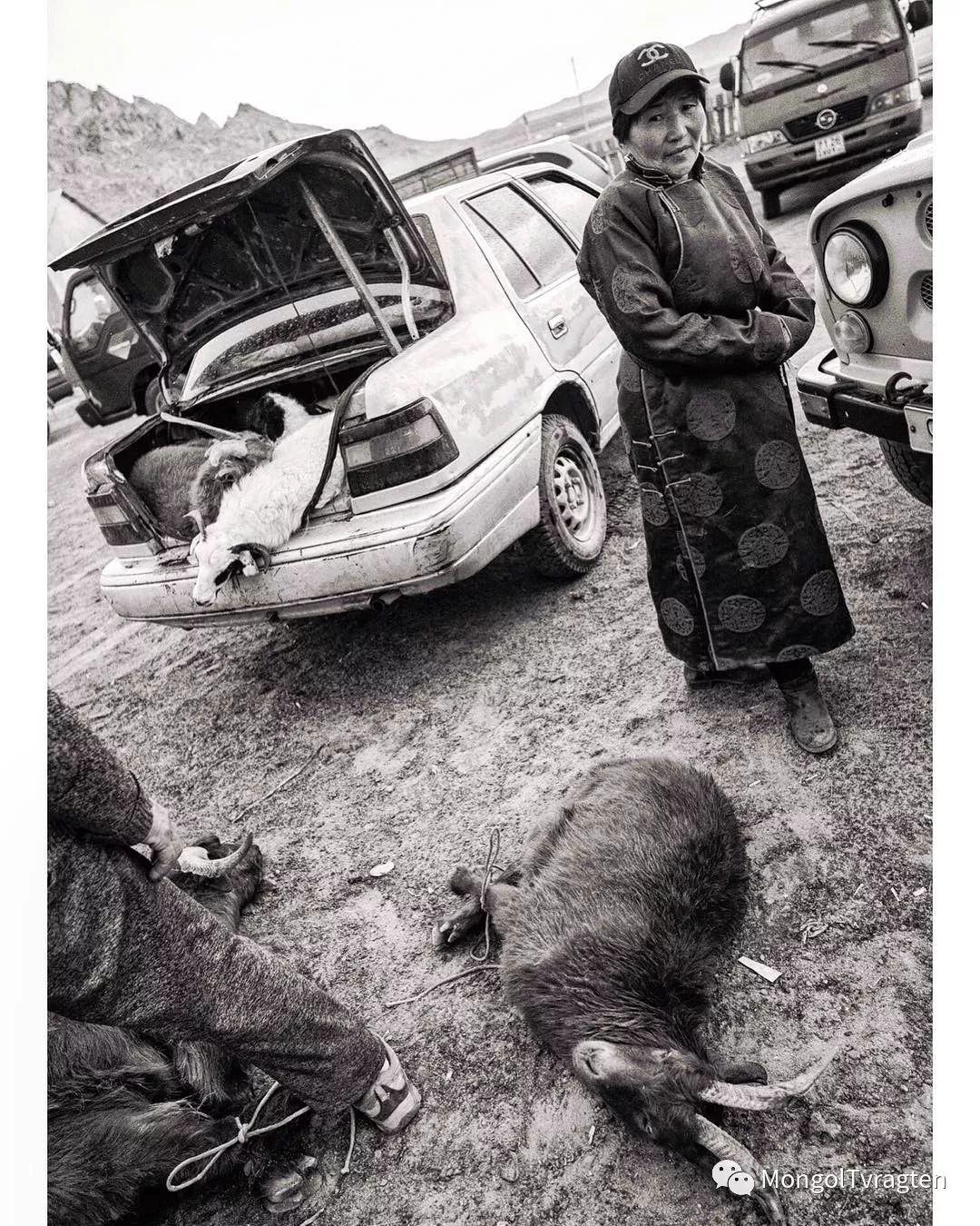 蒙古影像- c8x photography 第25张
