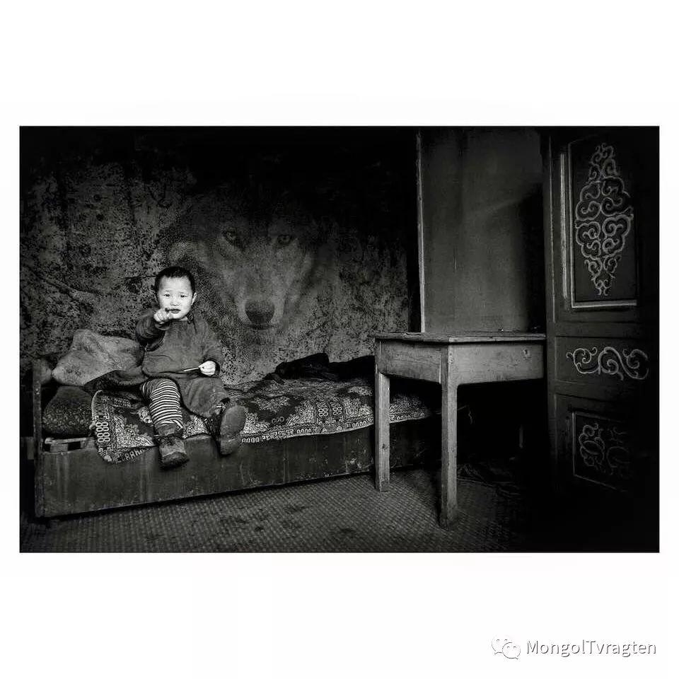 蒙古影像- c8x photography 第32张