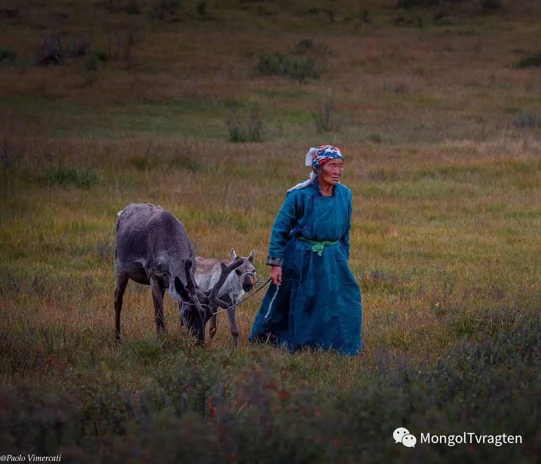 蒙古影像-Paolo Vimercati 第1张
