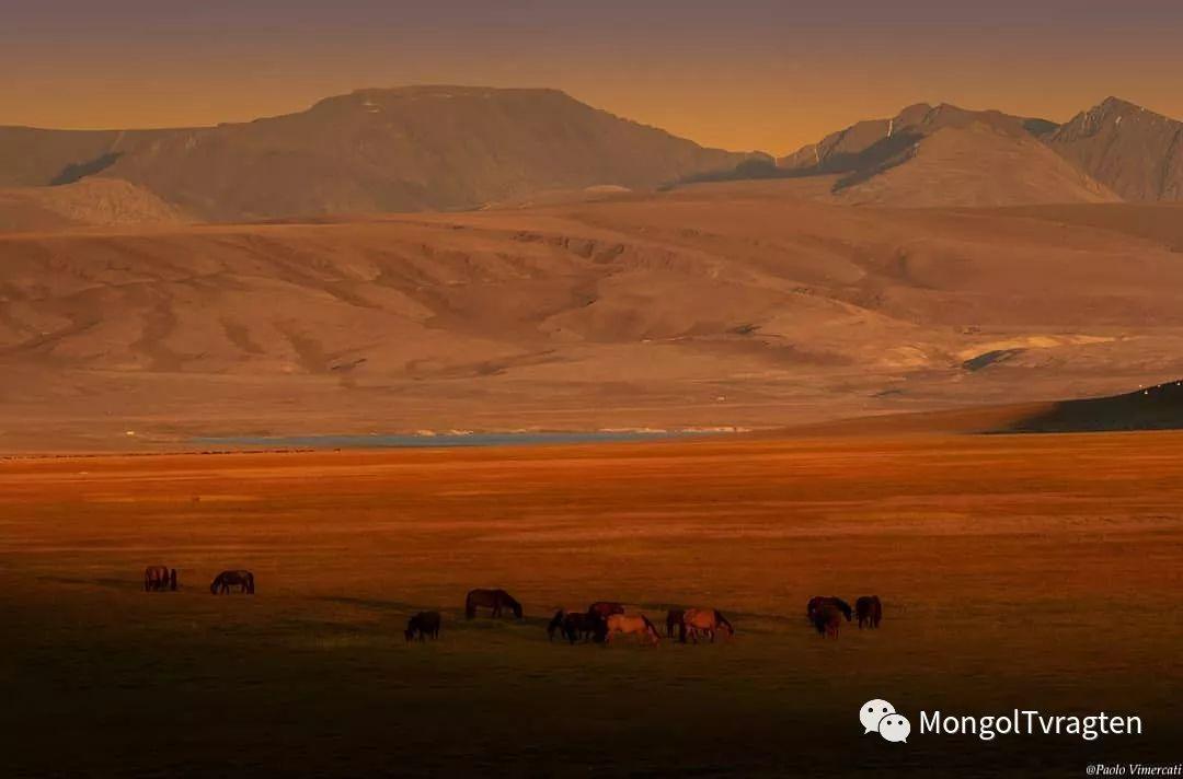 蒙古影像-Paolo Vimercati 第4张
