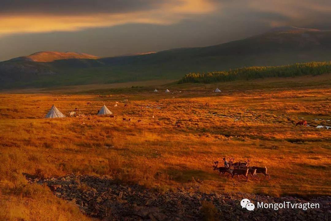 蒙古影像-Paolo Vimercati 第3张