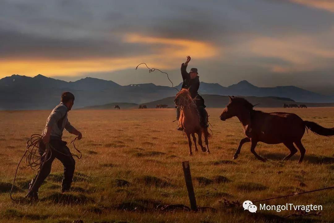 蒙古影像-Paolo Vimercati 第8张
