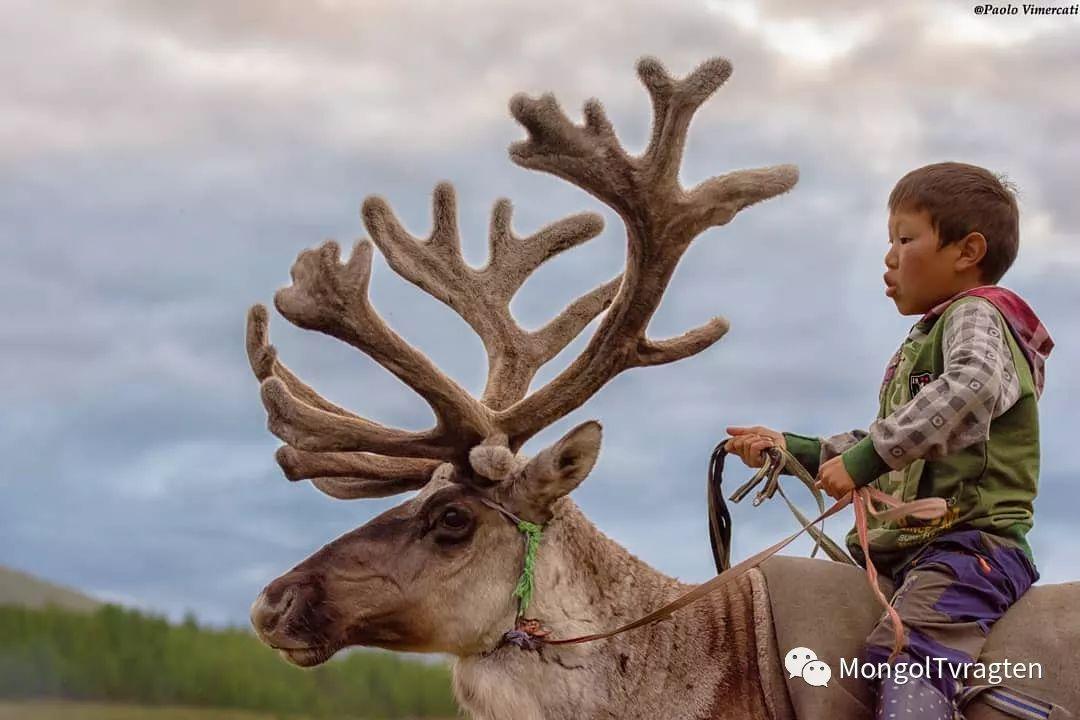 蒙古影像-Paolo Vimercati 第7张