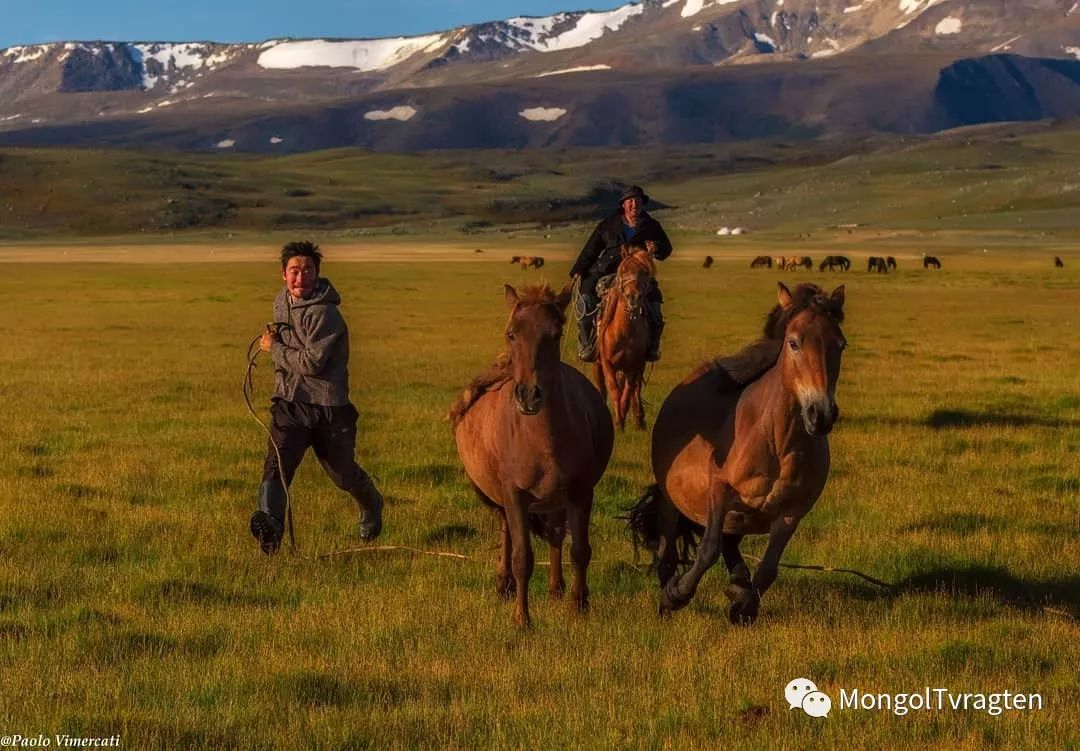 蒙古影像-Paolo Vimercati 第17张