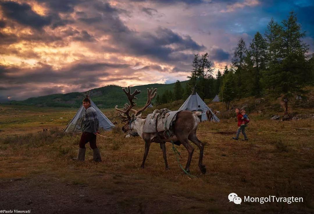 蒙古影像-Paolo Vimercati 第24张
