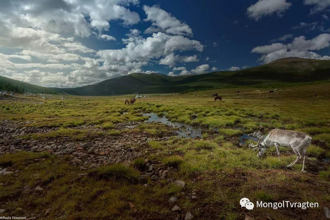 蒙古影像-Paolo Vimercati 第27张