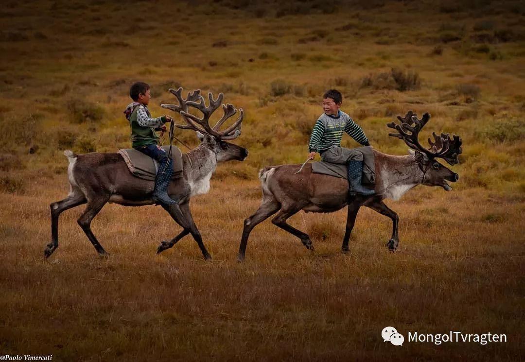 蒙古影像-Paolo Vimercati 第26张