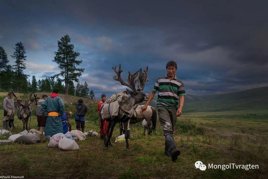 蒙古影像-Paolo Vimercati 第25张