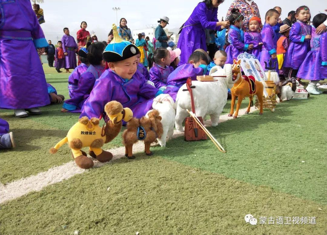 肃北雪山蒙古族孩子们独具特色的六一儿童节 第5张