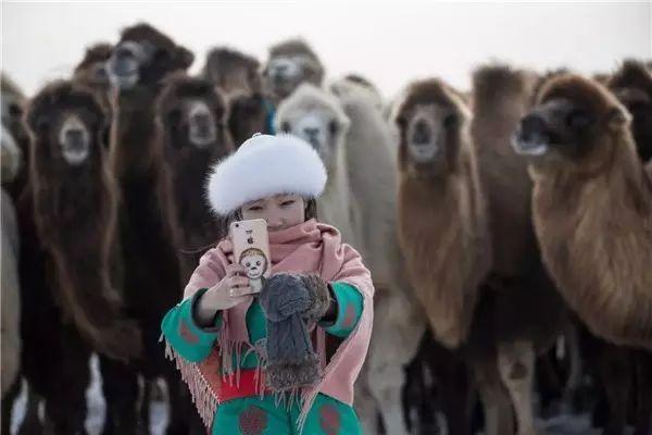 摄影师钢特木尔作品:镜头记录草原文化 第23张 摄影师钢特木尔作品:镜头记录草原文化 蒙古文化