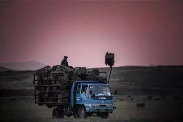 摄影师钢特木尔作品:镜头记录草原文化 第25张 摄影师钢特木尔作品:镜头记录草原文化 蒙古文化
