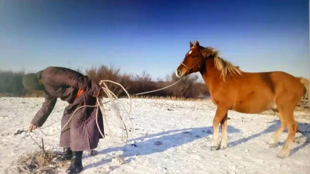 巴尔虎传统文化【第三十七期】 第9张 巴尔虎传统文化【第三十七期】 蒙古文化