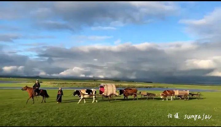 巴尔虎传统文化【第五十五期】 第12张 巴尔虎传统文化【第五十五期】 蒙古文化