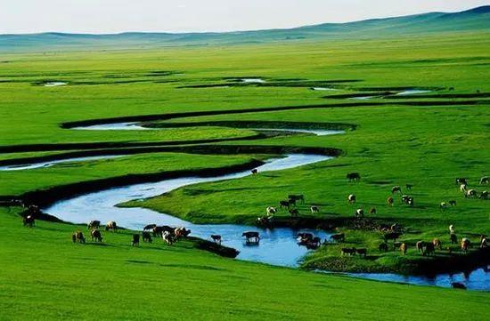 《美丽的草原我的家》背后的美丽故事 第1张 《美丽的草原我的家》背后的美丽故事 蒙古音乐