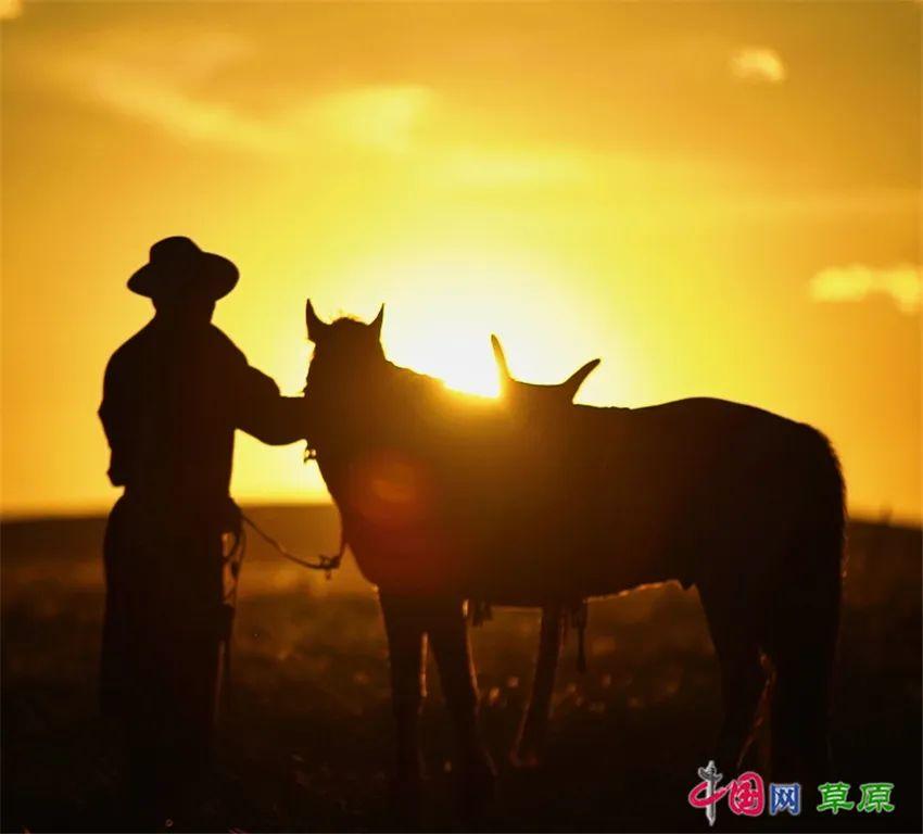 """乌英嘎《我多想回家乡》MV发布 """"草原天籁""""对家乡的深情告白 第11张"""