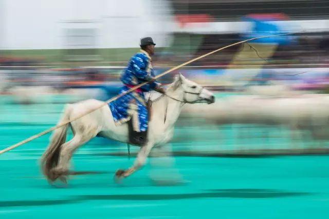 西乌珠穆沁——中国白马之乡 第8张