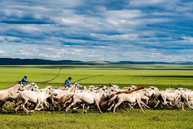 西乌珠穆沁——中国白马之乡 第10张