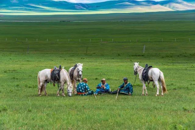 西乌珠穆沁——中国白马之乡 第16张