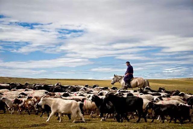 蒙古族四季游牧及走敖特尔习俗,你知道吗? 第1张 蒙古族四季游牧及走敖特尔习俗,你知道吗? 蒙古文化
