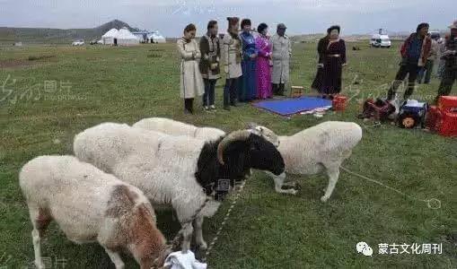 卫拉特蒙古传统婚礼习俗 第3张