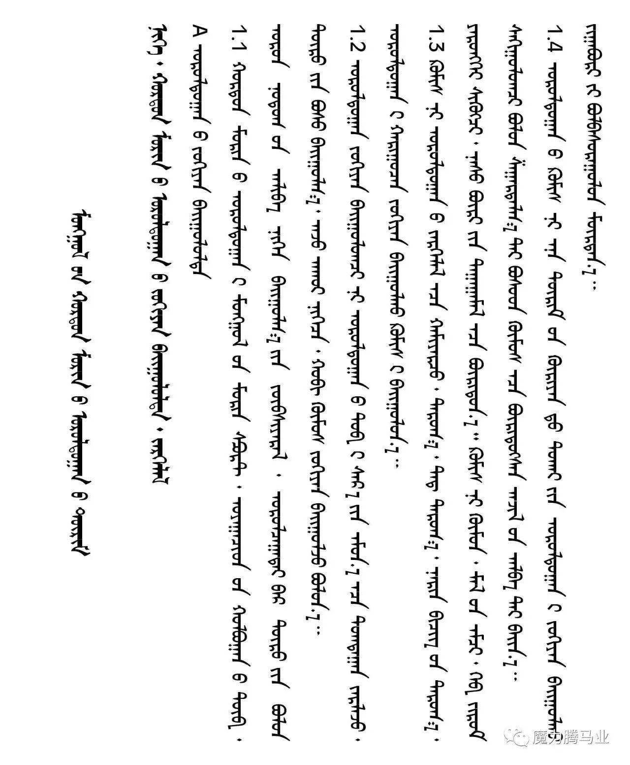 蒙古国赛马章程介绍 第9张 蒙古国赛马章程介绍 蒙古文库