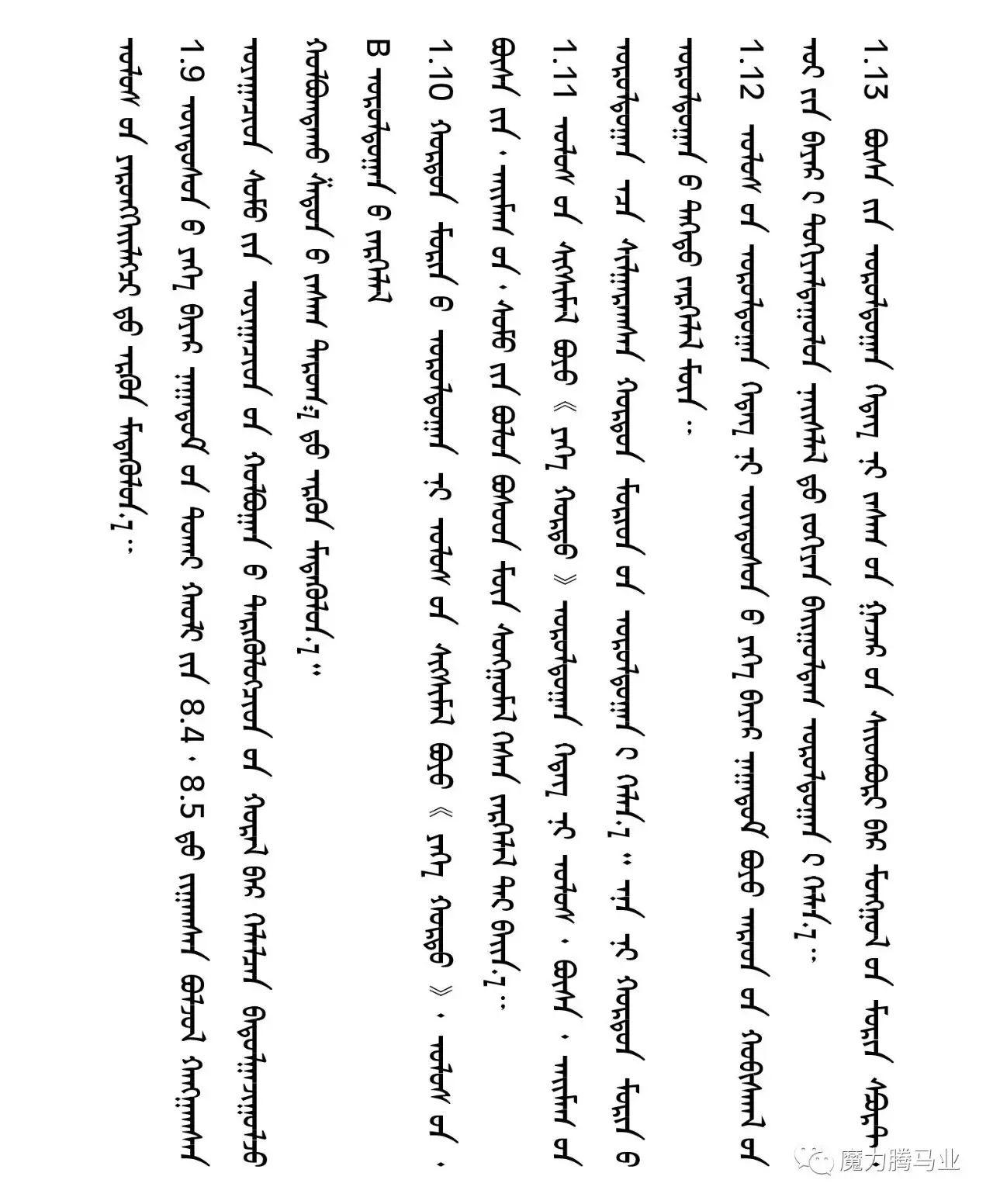 蒙古国赛马章程介绍 第13张 蒙古国赛马章程介绍 蒙古文库