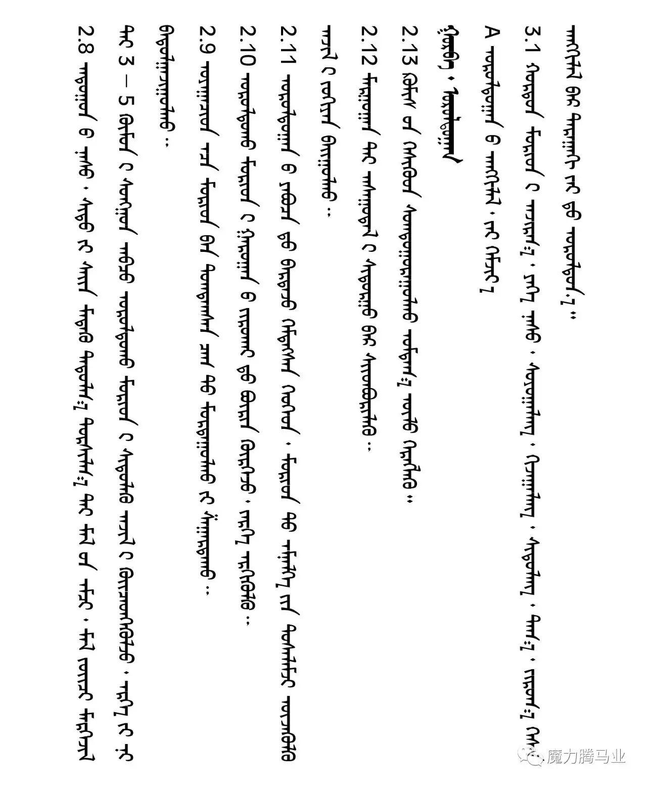 蒙古国赛马章程介绍 第19张 蒙古国赛马章程介绍 蒙古文库