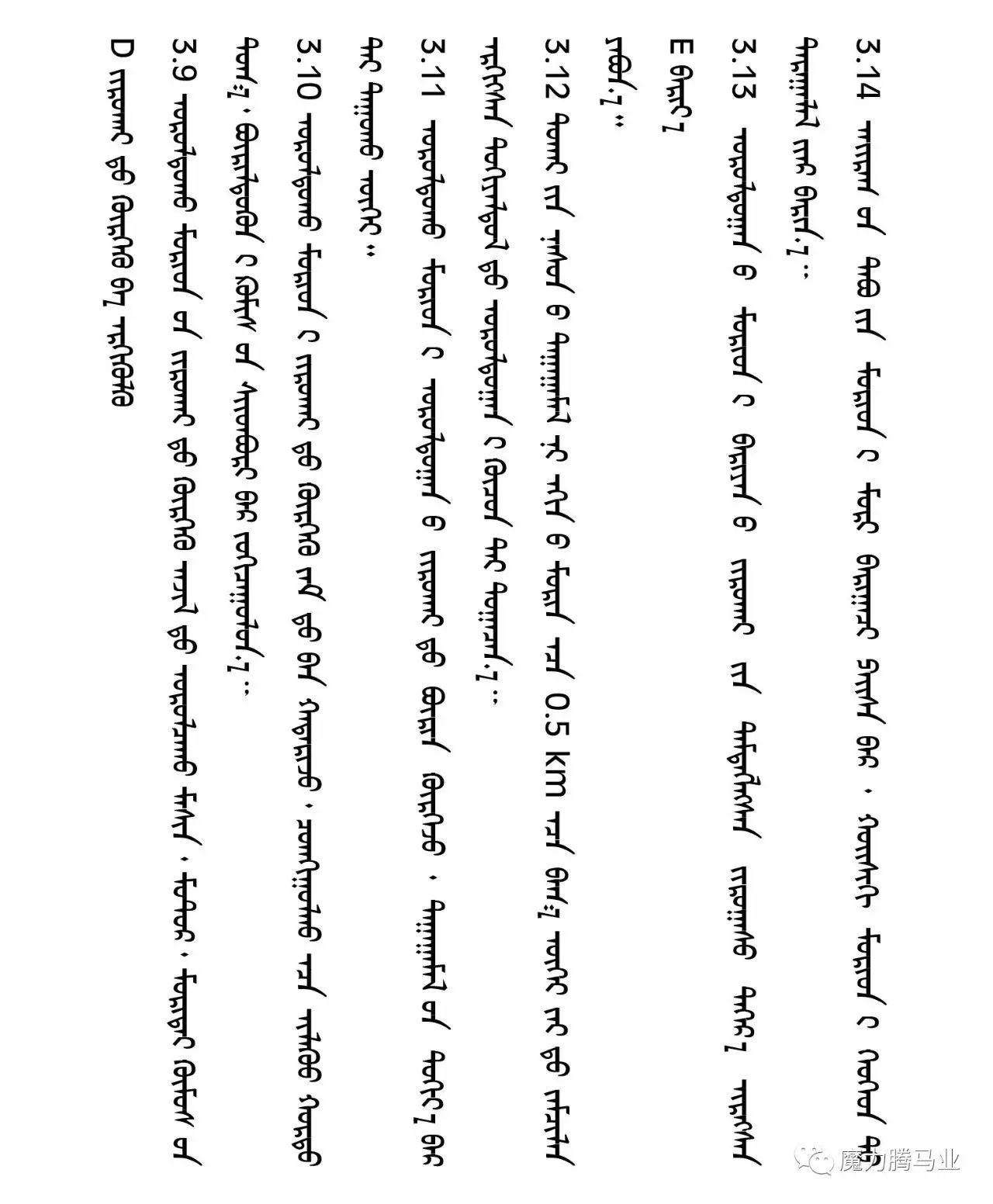 蒙古国赛马章程介绍 第25张 蒙古国赛马章程介绍 蒙古文库