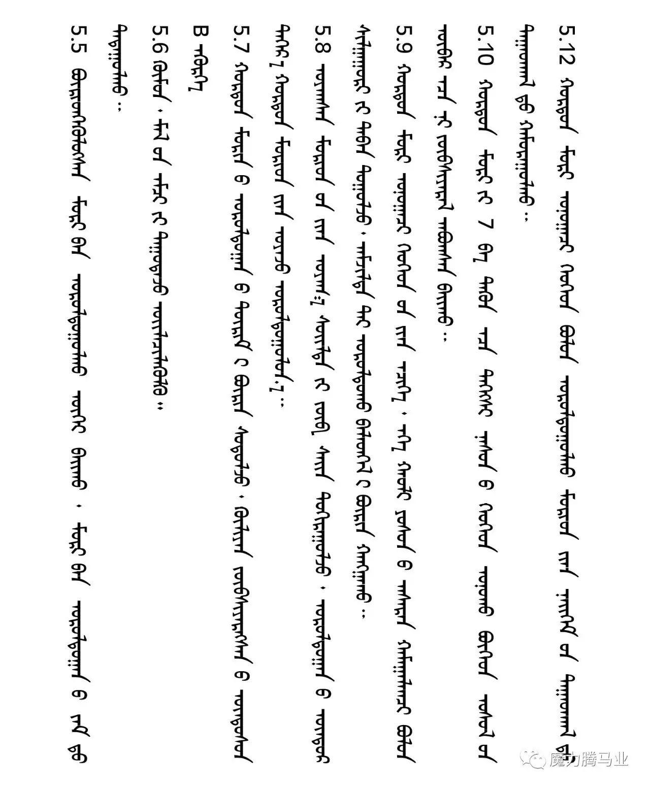 蒙古国赛马章程介绍 第33张 蒙古国赛马章程介绍 蒙古文库
