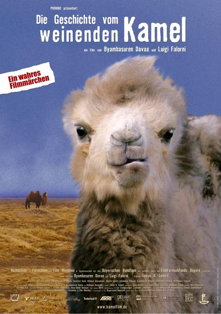 60部蒙古电影 部部都值得看 第122张 60部蒙古电影 部部都值得看 蒙古音乐