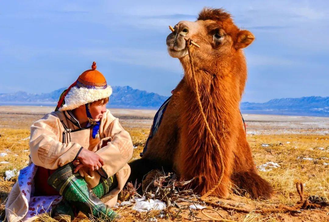 追光录影20载 沙海边陲护驼人 第8张