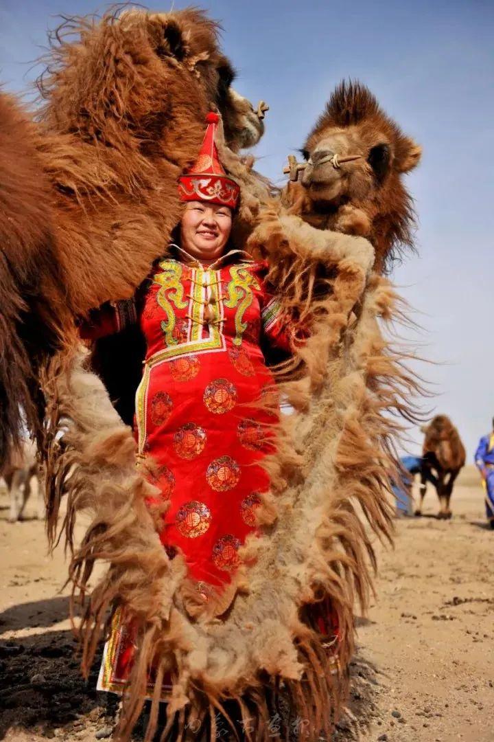 追光录影20载 沙海边陲护驼人 第18张