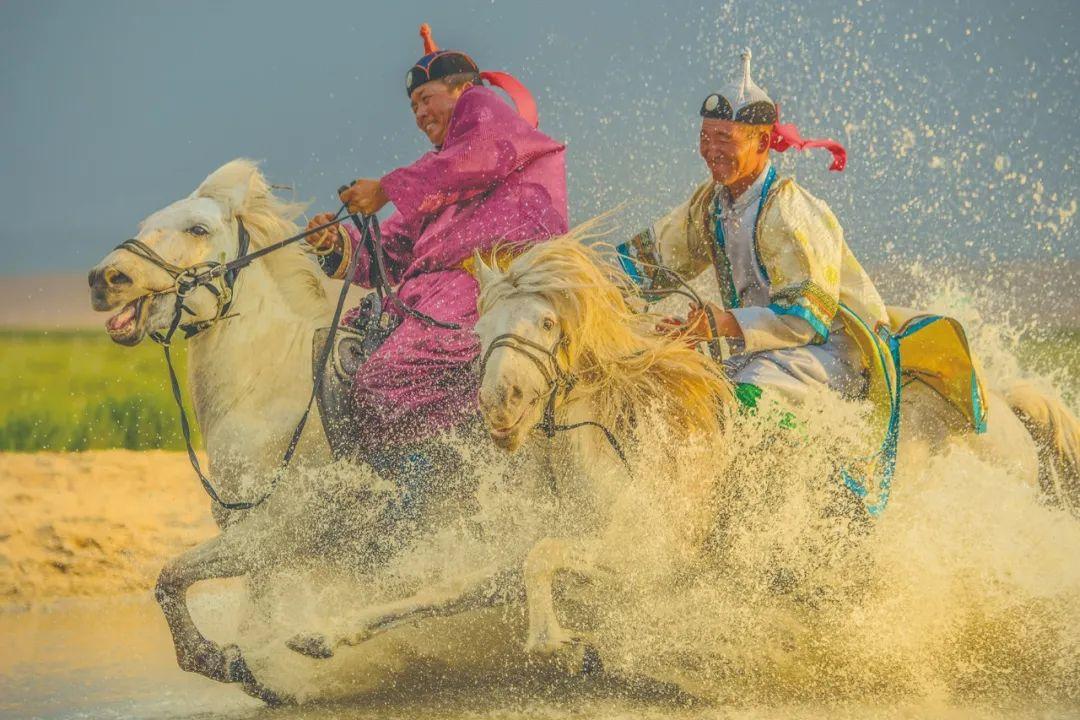 蒙古马神采 第7张