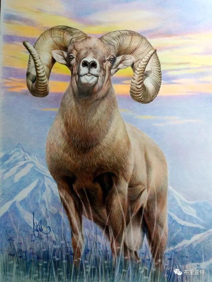 蒙古国油画,彩笔画大师巴雅尔作品欣赏 第43张