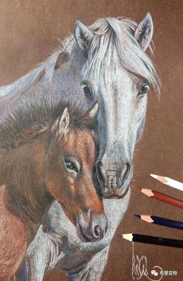 蒙古国油画,彩笔画大师巴雅尔作品欣赏 第49张
