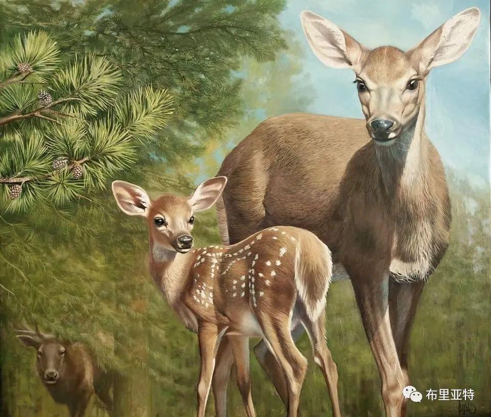 蒙古国油画,彩笔画大师巴雅尔作品欣赏 第56张
