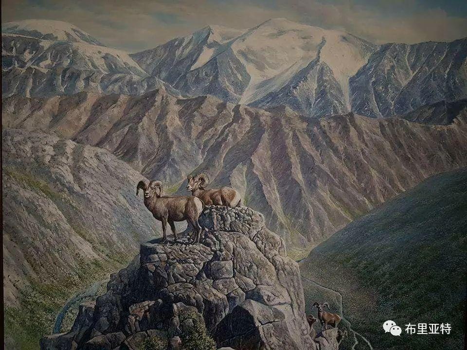 蒙古国油画,彩笔画大师巴雅尔作品欣赏 第68张