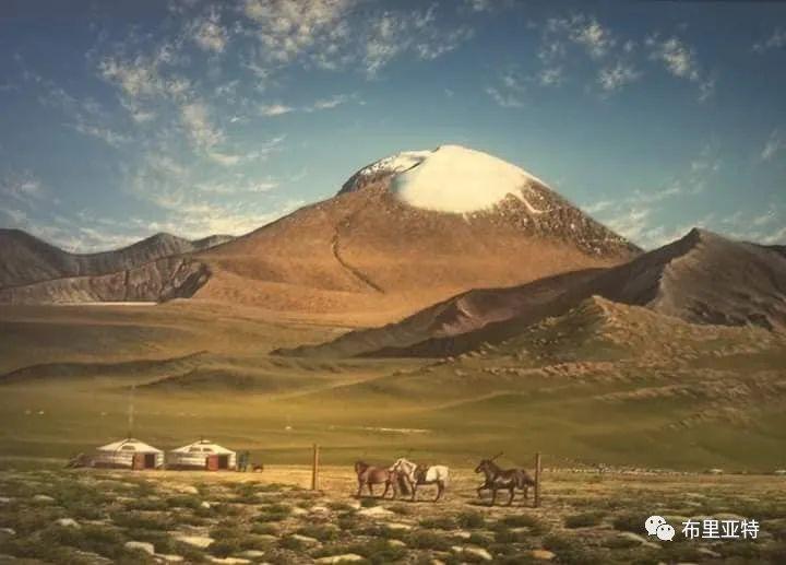 蒙古国油画,彩笔画大师巴雅尔作品欣赏 第73张