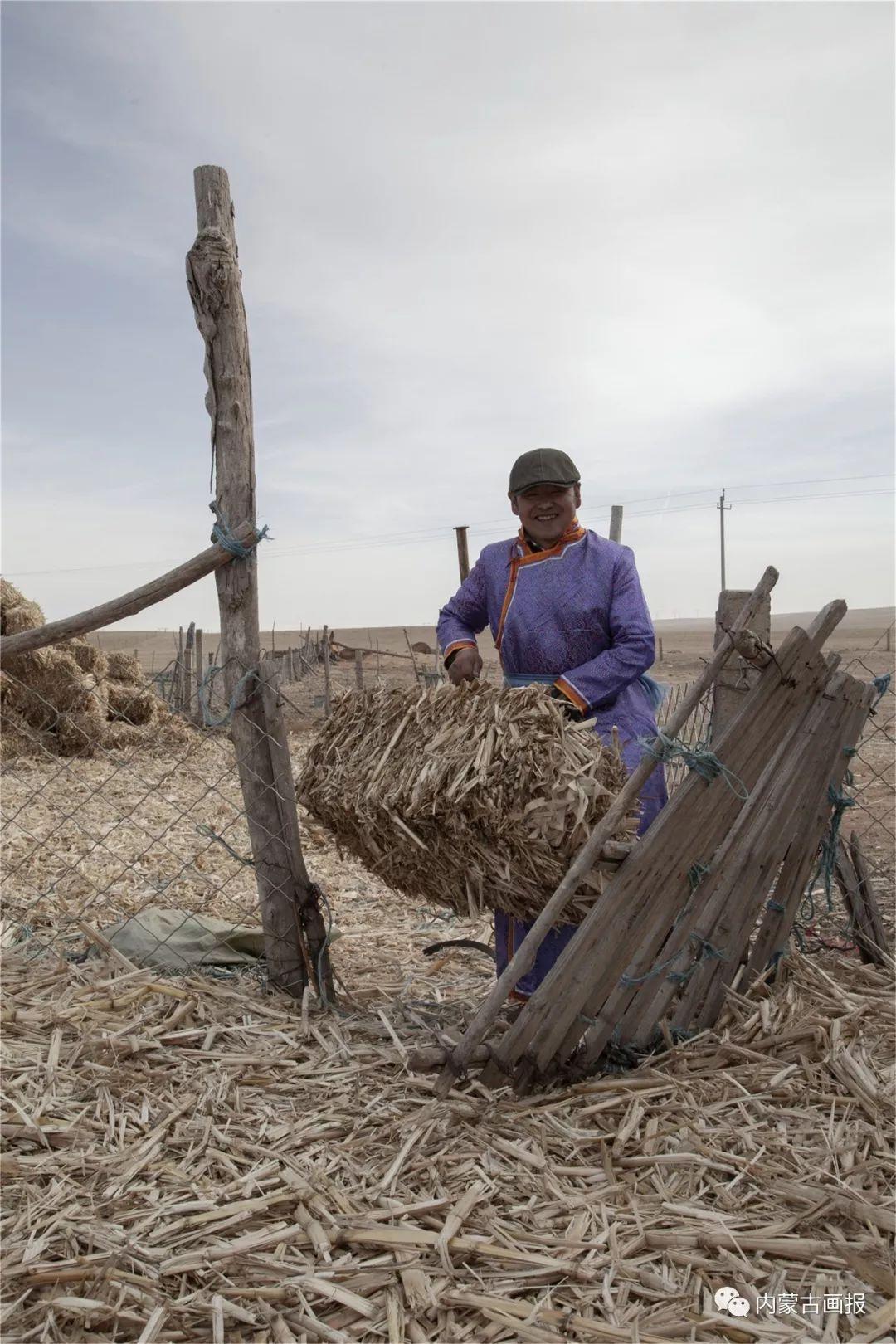 牧民的小年 第4张 牧民的小年 蒙古文化