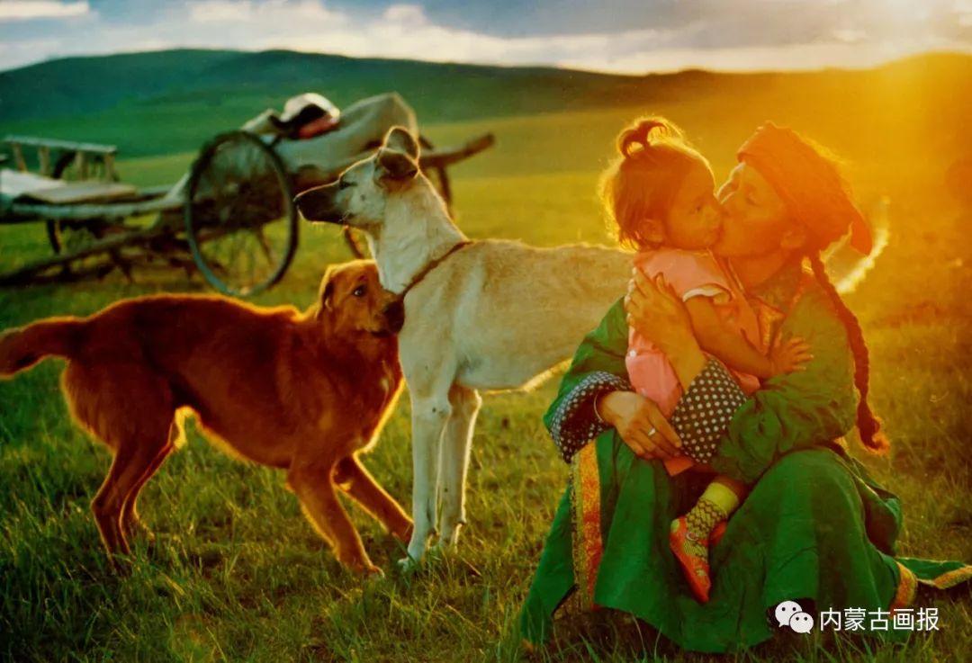 蒙古人忠实的伙伴——狗 第8张 蒙古人忠实的伙伴——狗 蒙古文化