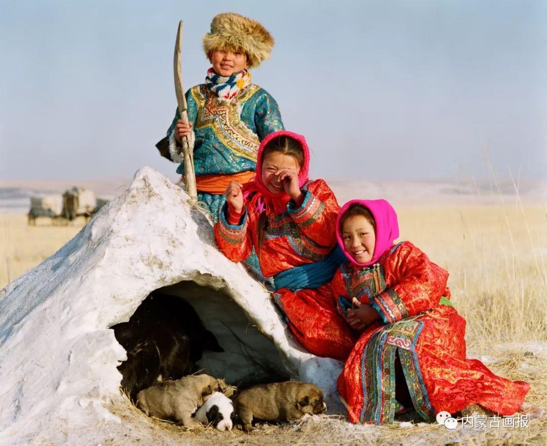 蒙古人忠实的伙伴——狗 第22张 蒙古人忠实的伙伴——狗 蒙古文化