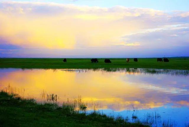 新疆巴音郭楞蒙古自治州和静县巴音布鲁克草原美景 第28张 新疆巴音郭楞蒙古自治州和静县巴音布鲁克草原美景 蒙古文化