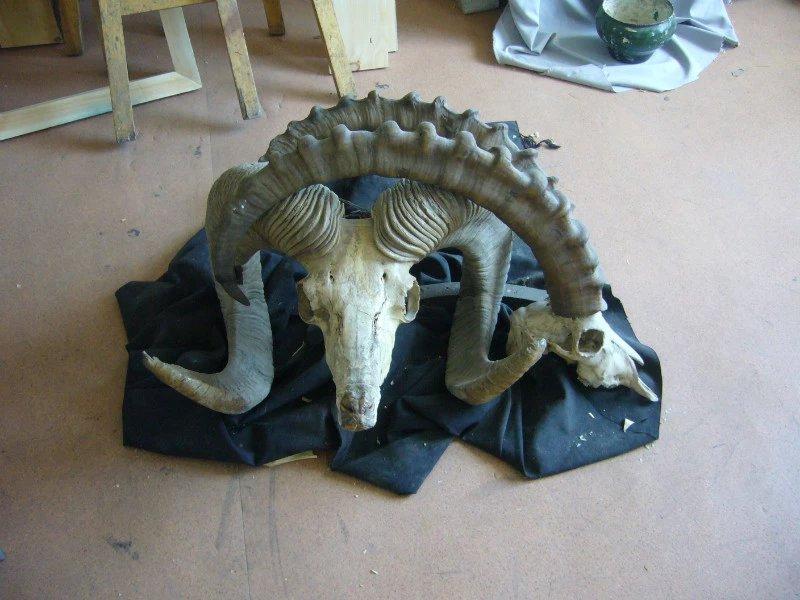 【艺术】蒙古风格的现代雕塑.雕刻 第59张 【艺术】蒙古风格的现代雕塑.雕刻 蒙古画廊