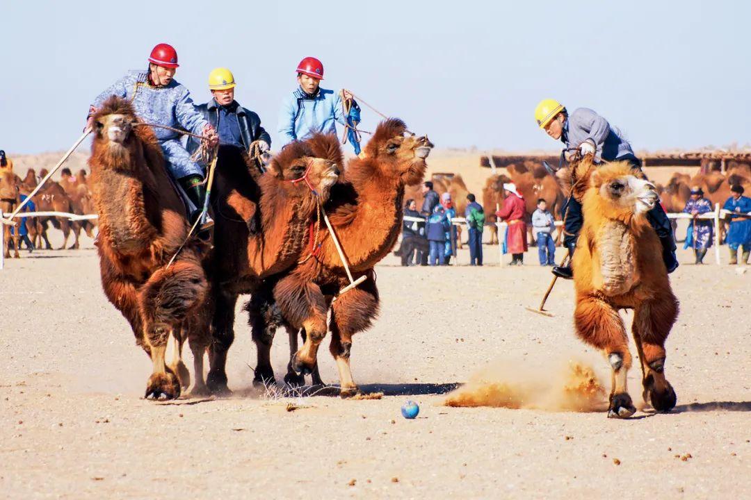 【爱上内蒙古】带您认识巴彦淖尔的非遗 第4张 【爱上内蒙古】带您认识巴彦淖尔的非遗 蒙古文库