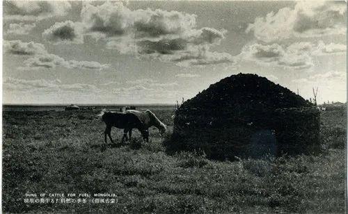 蒙古风俗(民国日本明信片) 第8张 蒙古风俗(民国日本明信片) 蒙古文化