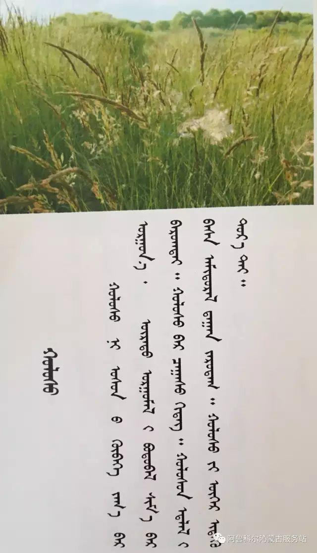 100 多种草的蒙古文介绍 第48张 100 多种草的蒙古文介绍 蒙古文库