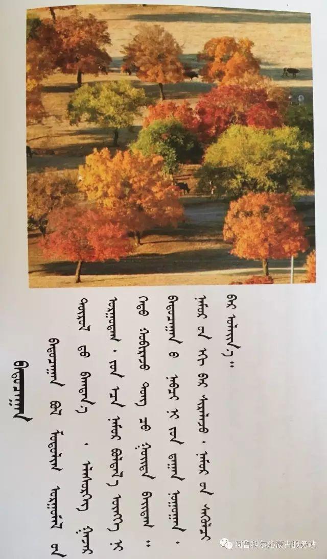100 多种草的蒙古文介绍 第107张 100 多种草的蒙古文介绍 蒙古文库